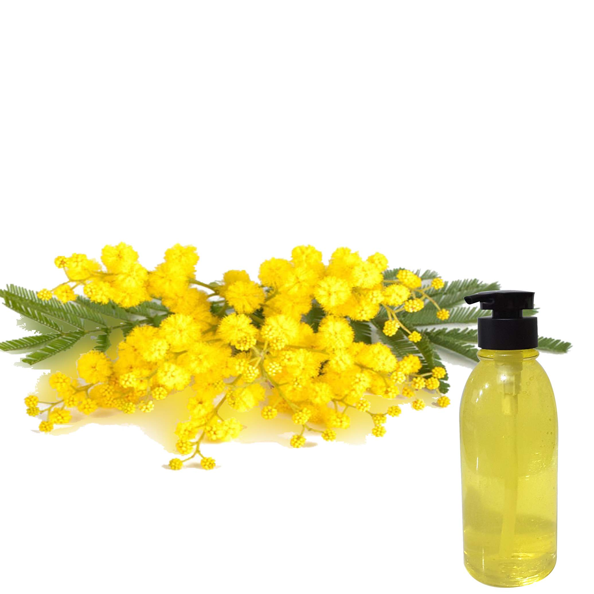 Virgin Canola (Rapeseed) Massage Oil Caramel EO -500ml